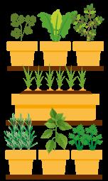 Ilustração de uma estante com 3 prateleiras e cada prateleira com vasos e plantas
